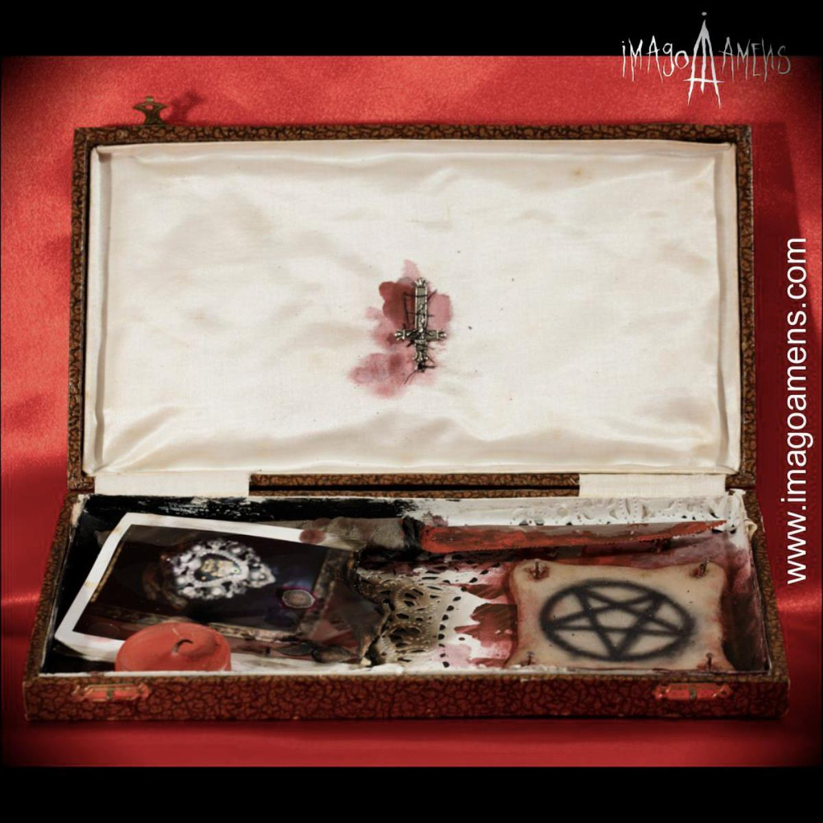 SECRET BOX  / Pelle tatuata - 4
